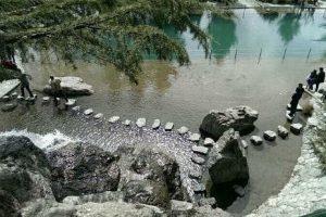 تفریح در پارک جمشیدیه