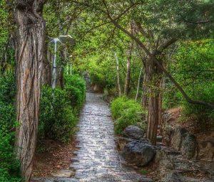 قدم زدن در پارک جمشیدیه
