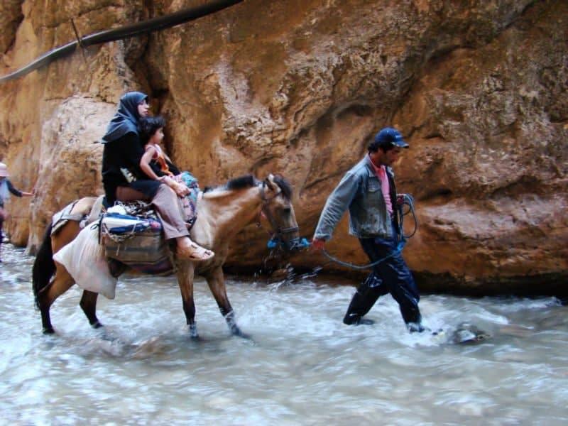 اسب سواری در دره واشی